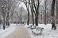 Хрещатий парк Київ 01.jpg