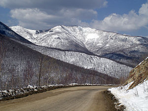Temperate rainforests of the Russian Far East - Sikhote-Alin mountain range in winter