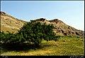 اطراف کویجه قلعه - panoramio.jpg