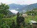 大隘村 Daai Village - panoramio (3).jpg