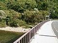 奥入瀬川にかかる橋 - panoramio.jpg