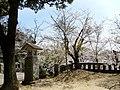 宇部市護国神社 - panoramio.jpg