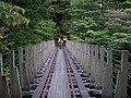 屋久島 - panoramio (7).jpg