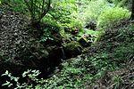 白岩の滝 - panoramio (25).jpg