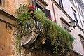 窗台上的花园 - panoramio.jpg