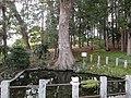 鹿島八幡宮の湧水池 - panoramio.jpg