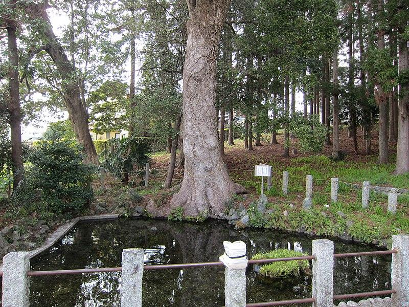 File:鹿島八幡宮の湧水池 - panoramio.jpg