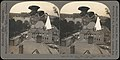 -Group of 107 Stereograph Views of Animals- MET DP72522.jpg