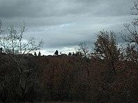 079Ludovo from road from Zhuzheltsi.jpg