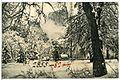 08244-Yosemite-1906-Winter in Yosemite-Brück & Sohn Kunstverlag.jpg