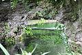 103 - Dettaglio del fiume.JPG