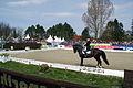 13-04-21-Horses-and-Dreams-Elena-Sidneva (16 von 21).jpg