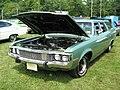 1973 AMC Matador wagon fl-Cecil'10.jpg