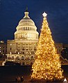 1982 U.S. Capitol Christmas Tree (31657784772).jpg
