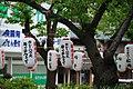 1 Chome Yukinoshita, Kamakura-shi, Kanagawa-ken 248-0005, Japan - panoramio - jetsun.jpg