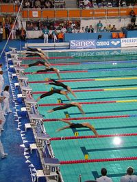 Start of the women's 400m freestyle at the 2008 Euros.