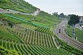 2012-08-12 12-47-06 Switzerland Canton de Vaud Grandvaux.JPG