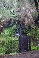 2012-10-27 12-52-00 Pentax JH (49284007422).jpg