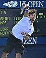 2013 US Open (Tennis) - Fabio Fognini (9662725989).jpg