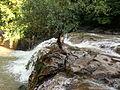 20140622 Dryanovo Monastery 24.jpg