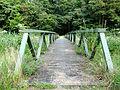 20140716 Horsterwold brug over Spiektocht.jpg