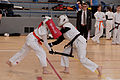 20150412 French Chanbara Championship 056.jpg