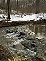 2016-02-08 14 21 22 A rocky portion of Little Difficult Run along the Gerry Connolly Cross County Trail between Vale Road and Lawyers Road in Reston, Fairfax County, Virginia.jpg