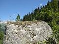 20160730 xl P1060182 Sankt Anton am Arlberg Moosbachtal.WMC.jpg