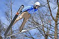 20170205 Ski Jumping World Cup Ladies Hinzenbach Elena Runggaldier 7728.jpg