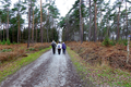 2018-12-22-December-watercolors.-Hike-to-the-Ratingen-forest. File-15.png