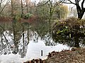 2020-12-12-Hike-to-Rheydt-Palace-and-its-surroundings.-Foto-45.jpg
