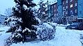 20210126 161457 January 2021 in Białystok.jpg