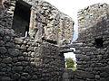 23. Ballyloughan Castle, Co. Carlow.jpg