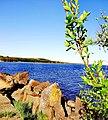 3409. Molodezhnoye. Chyornaya River mouth.jpg