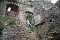 371viki Ruiny zamku Świecie. Foto Barbara Maliszewska.jpg