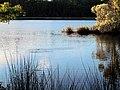 43 Bennetts Point RD Green Pond SC 6871 (12398257434).jpg