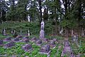 46-233-0132 Bibrka Mass Grave RB.jpg