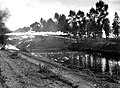 4th Canadian Armoured Division flamethrower demonstration across canal Balgerhoeke Belgium October 1944.jpg