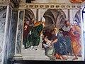 8752 - San Vito al Tagliamento - Santa Maria dei Battuti - Pomponio Amalteo - Presentazione Vergine Tempio.JPG