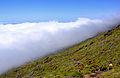 Açores 2010-07-22 (5149293708).jpg