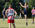 AFL Bond University Bullsharks (18120189866).jpg