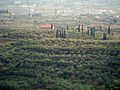 AGRINIO REGION.jpg