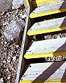 AREA 6 -SAFETY HAZARDS NEVADA TEST SITE - DPLA - b45f459b9497c14493a4af731d44d12e.jpg