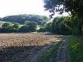 A Rare Suffolk Slope - geograph.org.uk - 1445067.jpg