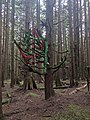 A decorated tree on Manbun trail - panoramio.jpg
