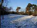 A dusting of snow - geograph.org.uk - 1660482.jpg
