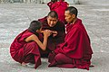 A group of monks in discussion at Kagyu Thekchen Ling Monastery, Lava, Sikkim.jpg