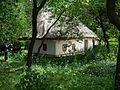 A house in Pirogov.jpg