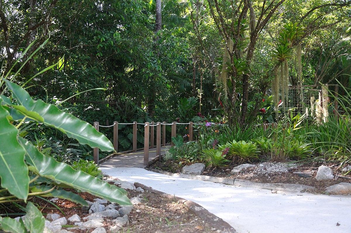 Jardin botanique de guyane wikip dia for Camping le jardin botanique limeray