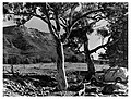 A scene in the Flinders Ranges about 1935 – Frank Hurley photograph (History Trust SA GN05638) – repaired.jpg